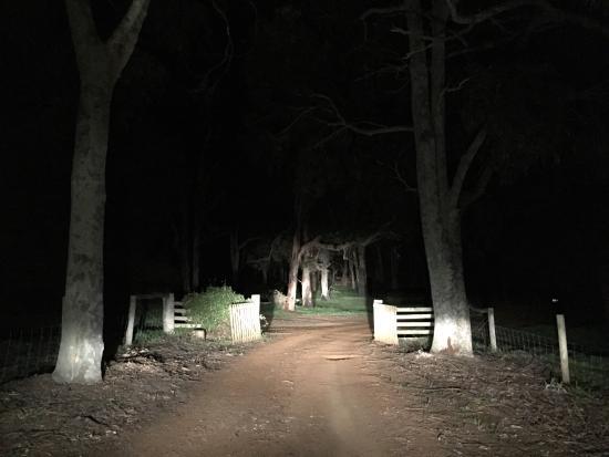 Wildwood Valley: photo1.jpg