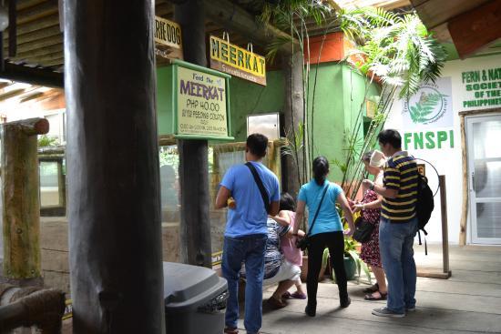 Ark Avilon Zoo: Ground Floor