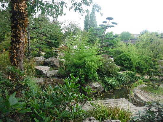 Photo de jardin japonais nantes tripadvisor for Jardin japonais nantes