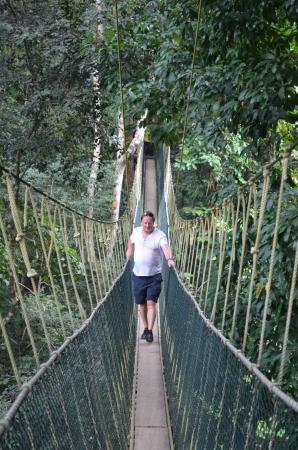 Вилайят Персекутуан, Малайзия: Canopy walk Taman Negara