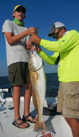 Barataria, LA: This bull redfish weighed over 26 lbs