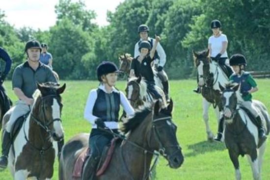 Abbeyfield Farm Country Pursuits : Horse Trekking