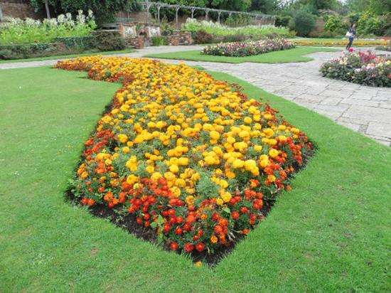Prittlewell Priory: walled gardens