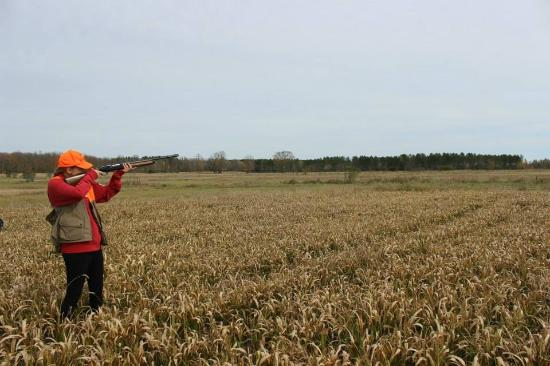 Pheasant Hunting - Picture of Heritage Hunt Club, Laona ...