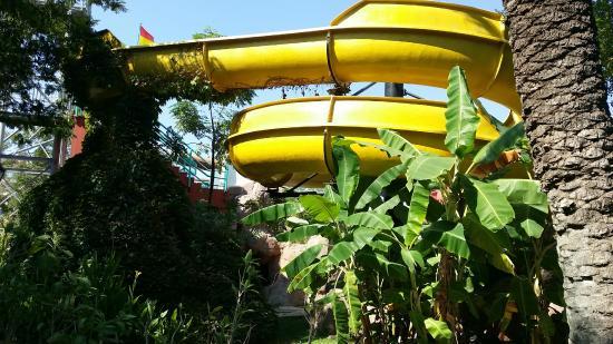 Belconti Resort Hotel: tobogán