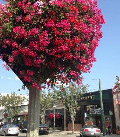 Main Street, Santa Paula, CA