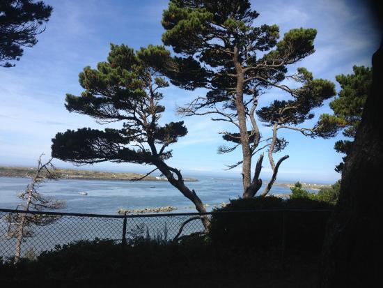 Ocean Breeze Motel: Walking trail