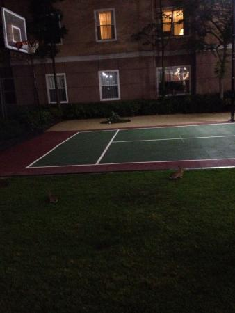 Residence Inn Anaheim Hills Yorba Linda: Bunnies on the tennis court :)