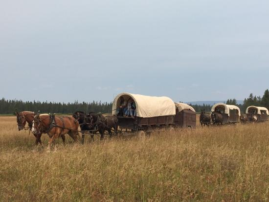 Teton Wagon Train & Horse Adventure Aufnahme