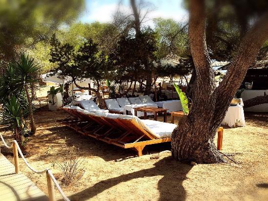 Cala Bassa Beach Club: CBbC