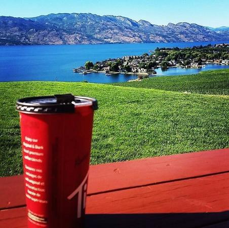 West Kelowna, Kanada: Where do you have your morning coffee? Quails gate winery view!