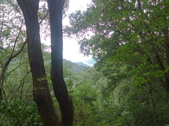 Tsuzurato Pass