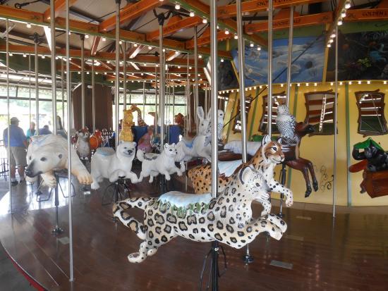 The Tundra habitat area on the carousel at Cleveland Metropark Zoo