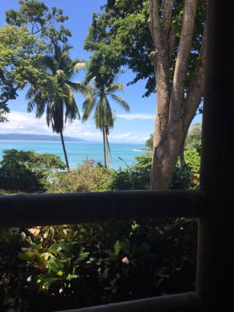 Casa Bambu Resort: View from the porch at Casa Linda--jungle meets sea