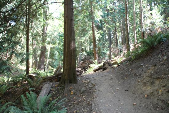Nanaimo, Canadá: Near the end of the trail