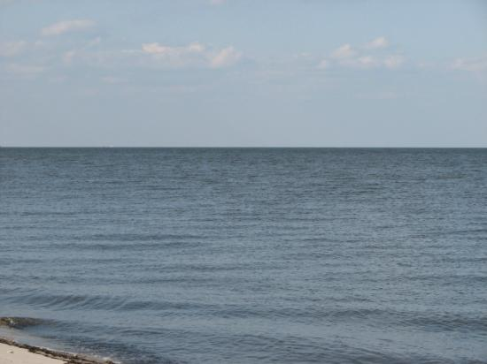 The Delaware Bay from Pickering Beach