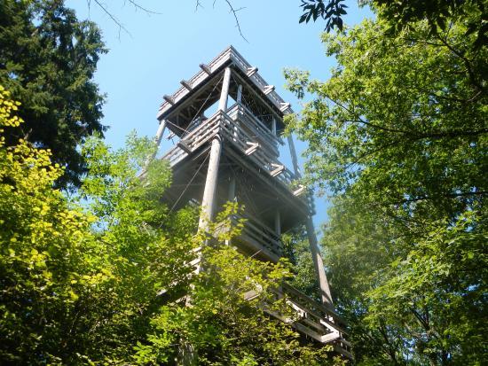 Schlitz Audubon Nature Center Observation Tower