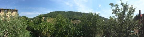 Santa Chiara: photo0.jpg