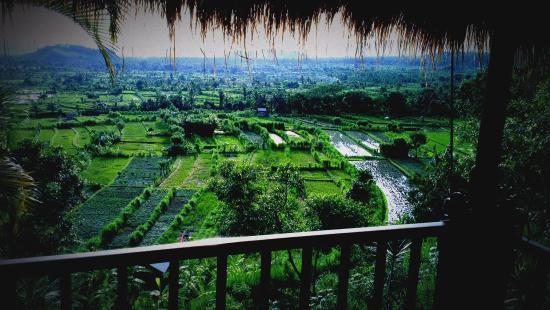 Kubu Carik Bali: View from the bedroom/balcony