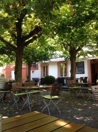 Klosterschenke: Smuk have med servering hele dagen - tag af sammenhængende, flade trækroner