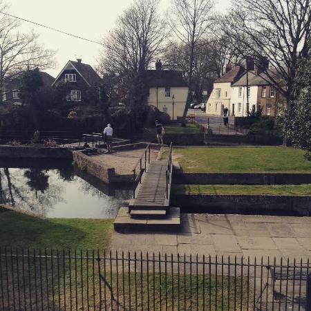 Abbots Mill Garden
