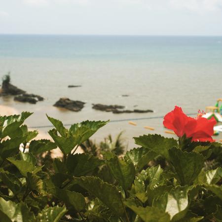 Kanucha Resort: photo1.jpg