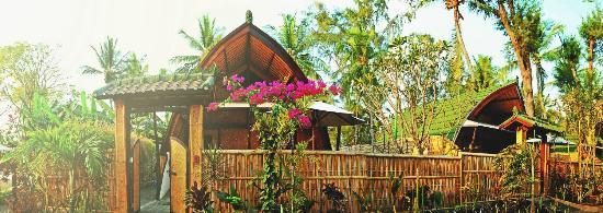 7SEAS Cottages