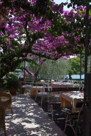 Hotel Gardenia al Lago: Терраса ресторана