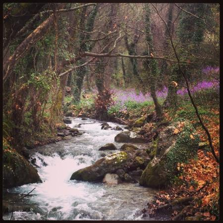 Kastora Canyon: Picture of Kastor river in Kastori-Saprta-Laconia province in March.