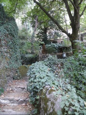Exemple de v g tations picture of le jardin d 39 eden for Le jardin d eden