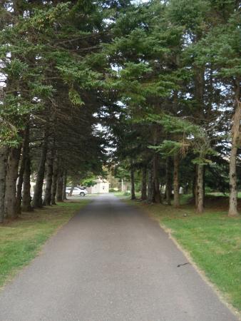 Fairways Cottages: Pour accéder au boardwalk