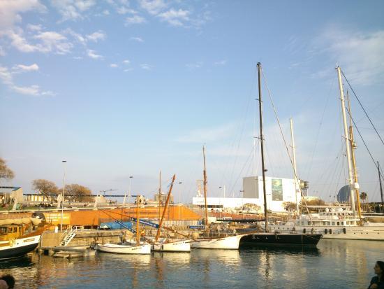 El Puerto de Barcelona: En el Puerto