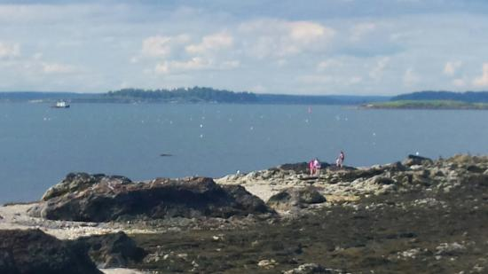 Eagle Island State Park: Beautiful ride out to the island