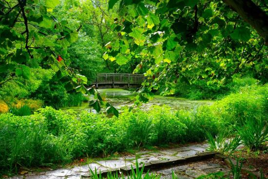 Wisconsin Botanical Gardens My Wisconsin Space 187 Olbrich Botanical Gardens Olbrich