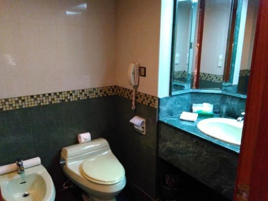 Wash basin toilet bowl and the place for ablution - Centrepoint hotel brunei swimming pool ...