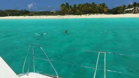 Simpson Bay, St. Martin: A little snorkeling