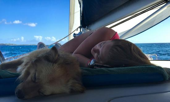 Simpson Bay, St-Martin/St Maarten: Ginger was relaxed with us