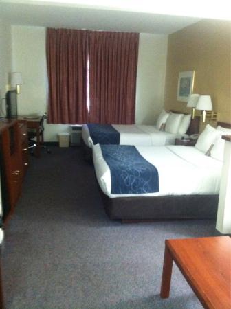 Comfort Suites Rochester : photo2.jpg