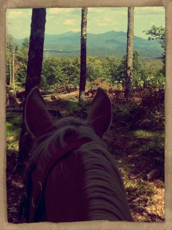 Adirondack Equine Center: Mountain Ride