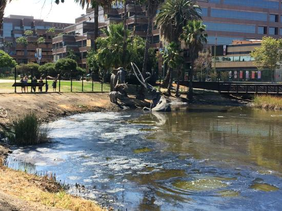 La Brea Tar Pits and Museum: view of tar pit