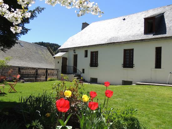 Hotel Restaurant du Plomb du Cantal: jardin sur l'arrière