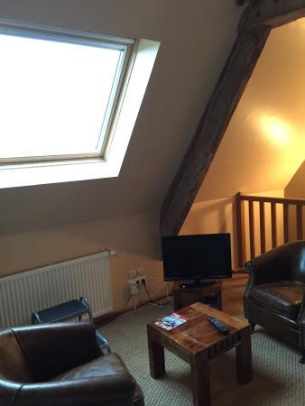 Saonnet, Fransa: La nostra camera sottotetto e gli splendi gatti...un paradiso