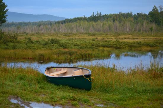 Moosehead Lake: Canoe in the backwoods
