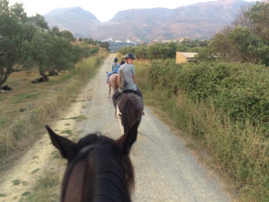 Alianthos Horse Riding Photo