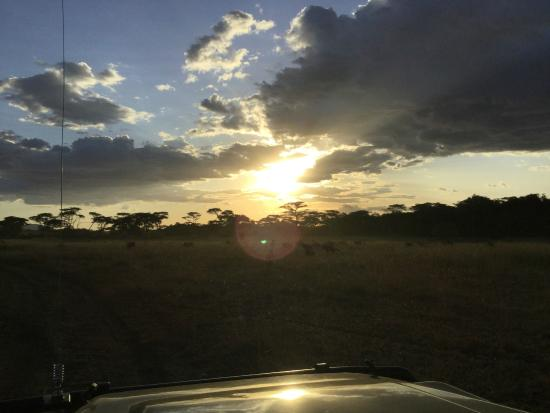 Ubuntu Camp, Asilia Africa: Awesome sunsets