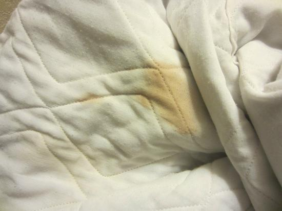 Days Inn New Market  Battlefield: Blanket Stains