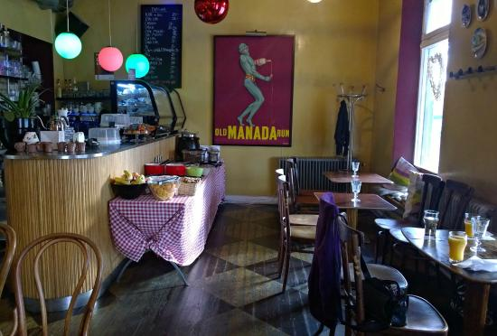 Cafe Kaka: Överblick