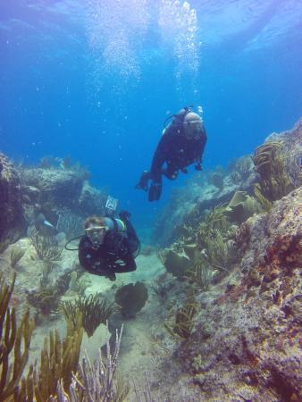 خليج سيمبسون, سانت مارتن: Mike & Me