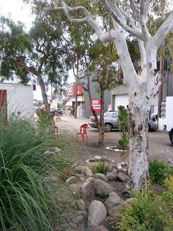 La Mision, Μεξικό: Surf Camp