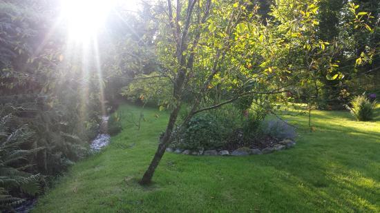 Wheddon Cross, UK: Lovely garden
